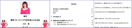 ogawaai090