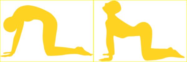 yooga3